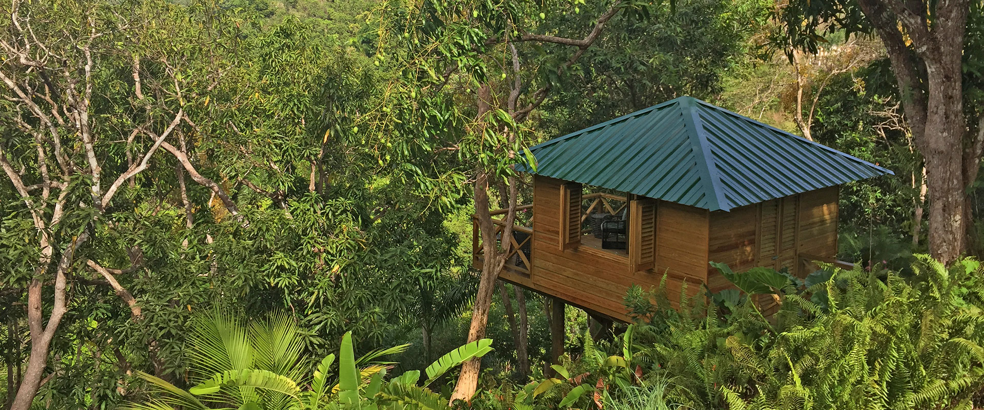 """PR Treehouse, Yunque Hotel, PR Rainforest Hotel, PR Eco Resort, PR Ecolodge, Yunque Lodging and PR Glamping"""